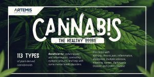 The Health Benefits of Cannabis Infographic